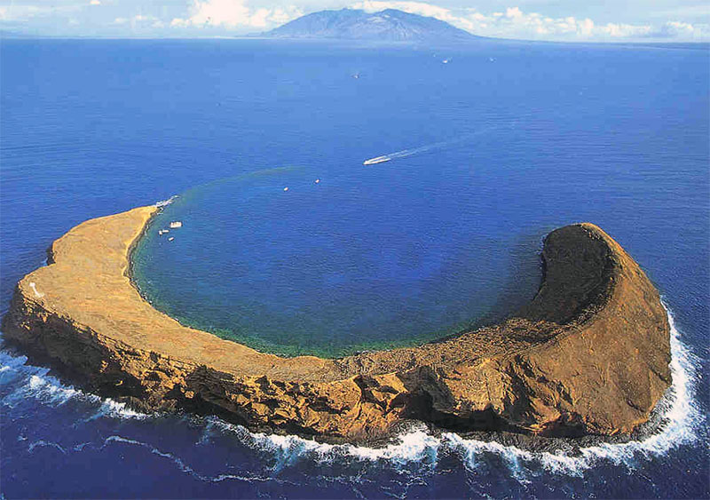 Product 11:30 Molokini Express (2 Hours)